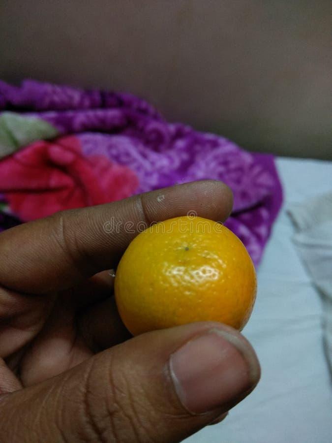 矮人柠檬 免版税库存图片