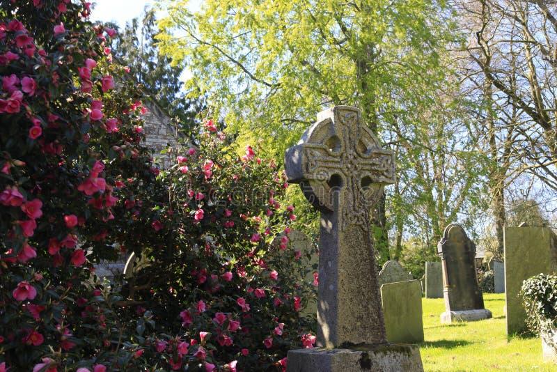 石十字架和花康沃尔郡 库存照片