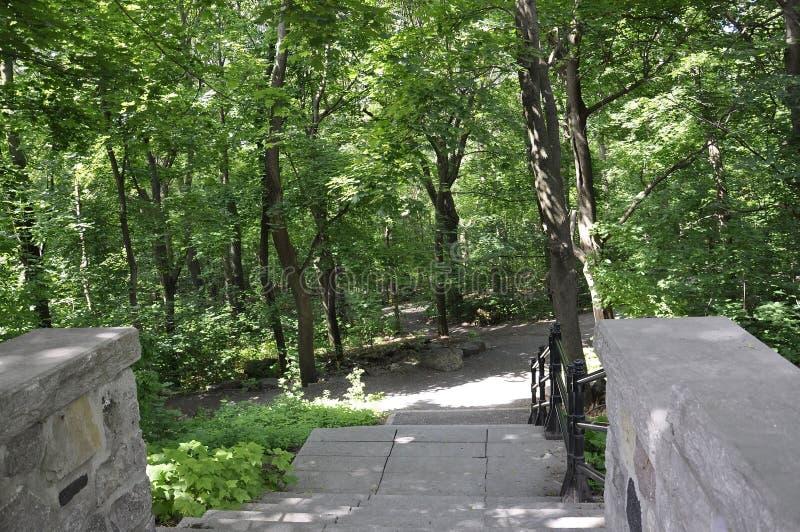 石台阶胡同在皇家山公园从蒙特利尔的 免版税库存照片