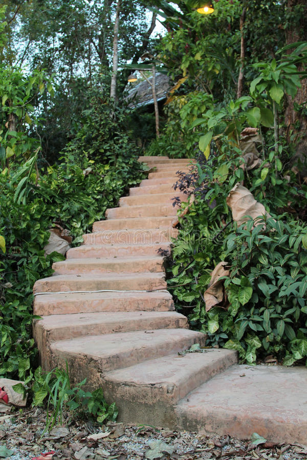 Download 石台阶 库存照片. 图片 包括有 石头, 梯子, 旅行, 假期, 庭院, 测试, 结构树, 放松, 农村 - 72353286