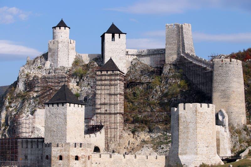 石墙和塔Golubac堡垒 免版税库存照片