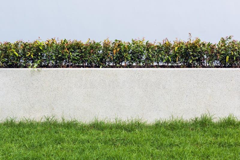石墙和植物群与草在庭院装饰设计为 图库摄影