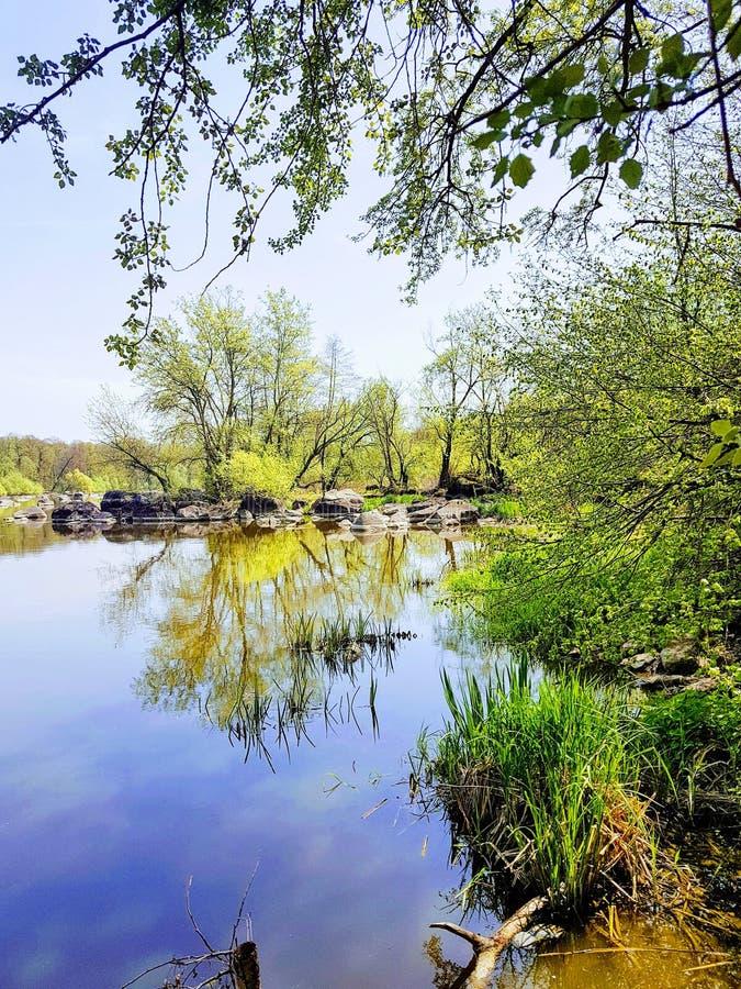 石头和急流在Pivdenniy臭虫河,寄生虫视图 Sokilets村庄,涅米罗夫区,Vinnytsya地区,乌克兰 库存图片