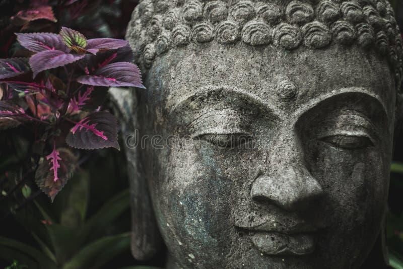 石头手工制造被雕刻的菩萨面孔特写镜头 库存图片