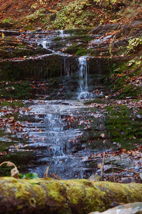 石头瀑布反射森林水秋天树太阳风景黄色公园离开 库存照片