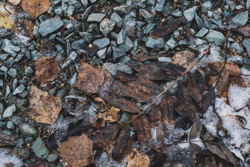 石头留给雪霜干燥棕色灰色黑纹理冬天寒冷结冰 库存图片