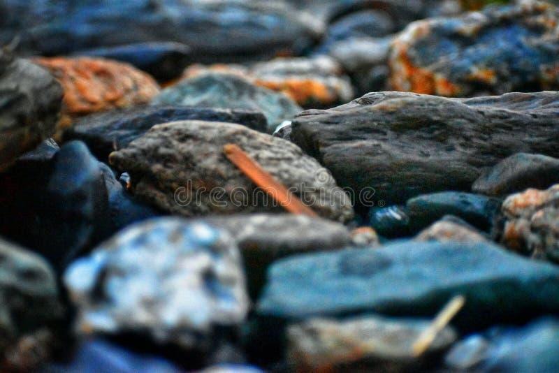 石头的微图片在河河岸的  免版税图库摄影