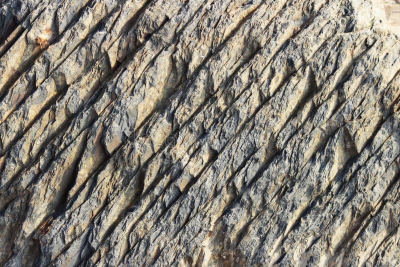 石头的纹理与白色静脉的 据推测油母页岩 库存照片
