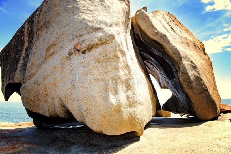 石头,坎加鲁岛,澳大利亚牡鹿在卓越的岩石的 免版税库存图片