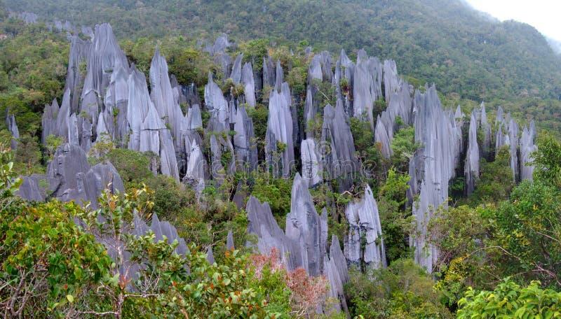 石峰, Gunung Mulu,婆罗洲,马来西亚 免版税库存图片