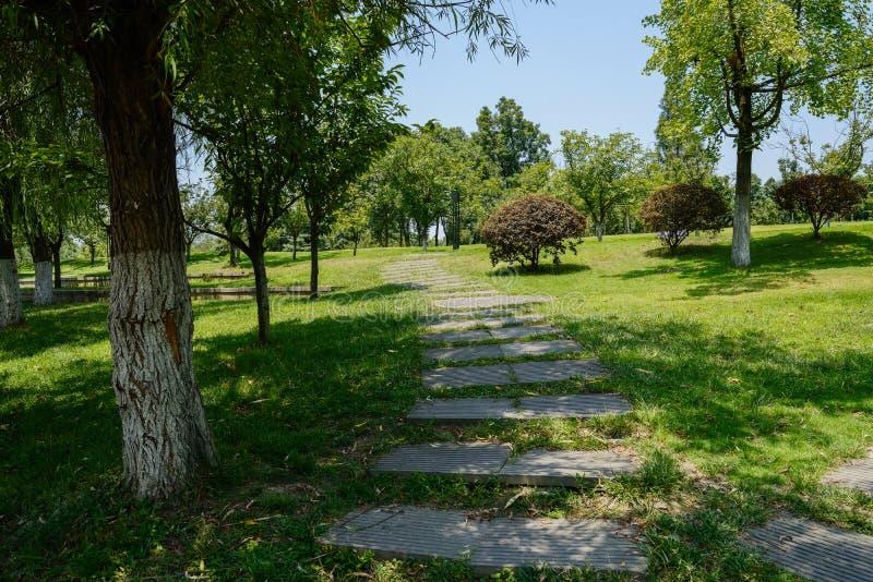 石板道路在倾斜的象草的草坪 免版税库存图片