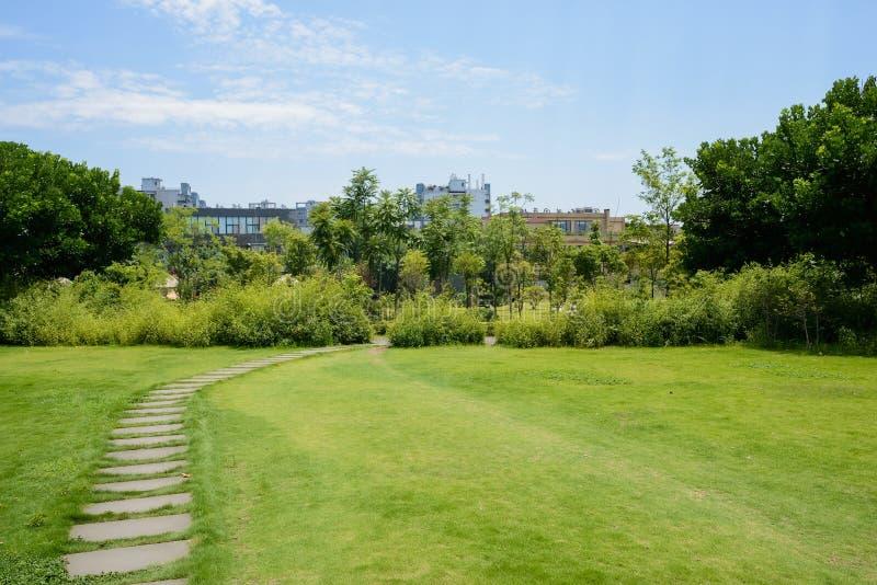石板道路在大厦前的草坪在森林在晴朗的夏天 库存照片