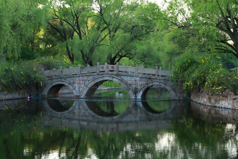石桥梁在上海春天公园  库存图片