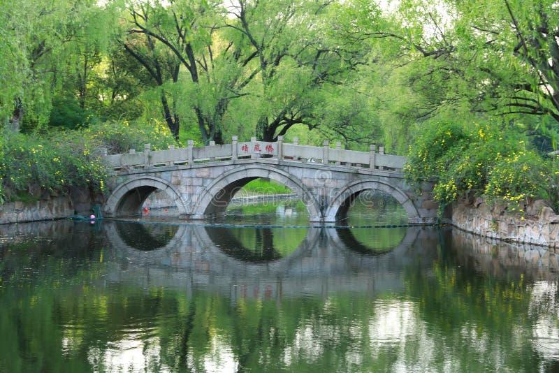 石桥梁在上海春天公园  库存照片
