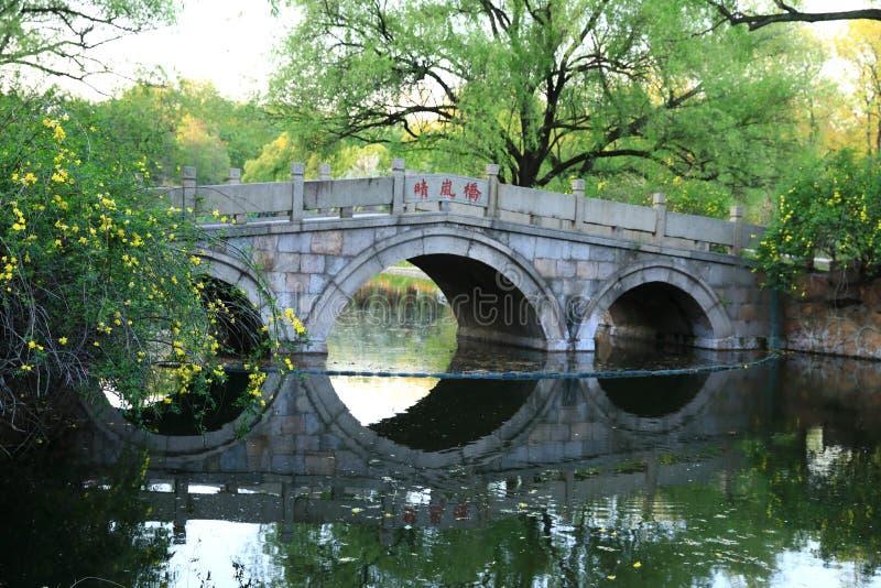 石桥梁在上海春天公园  图库摄影
