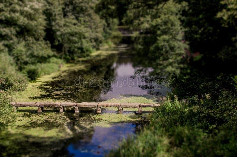 石桥梁在池塘 图库摄影