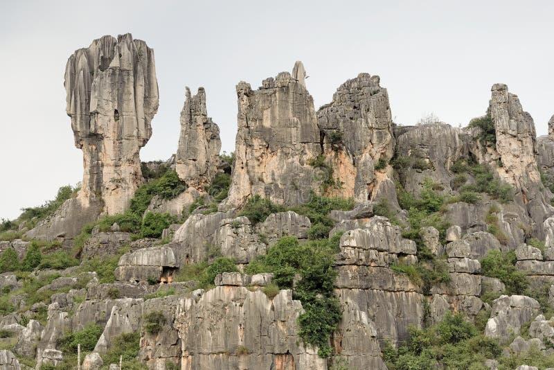 download 石森林,云南,中国 库存照片.图片