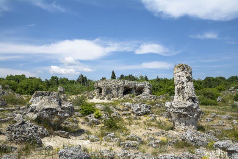 石森林- pobiti kamani和dikilitash,保加利亚图片
