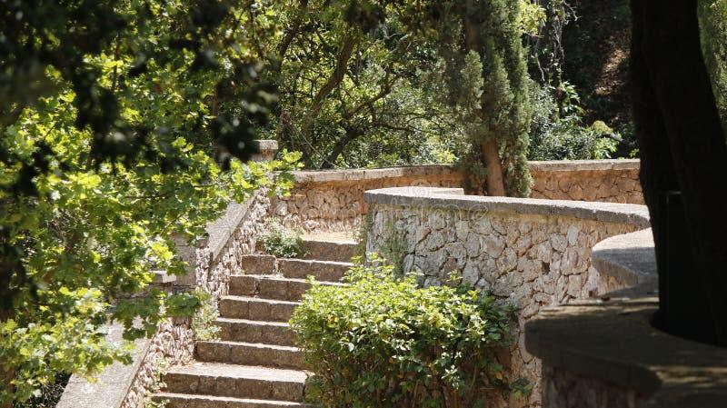 石楼梯在公园 免版税库存图片