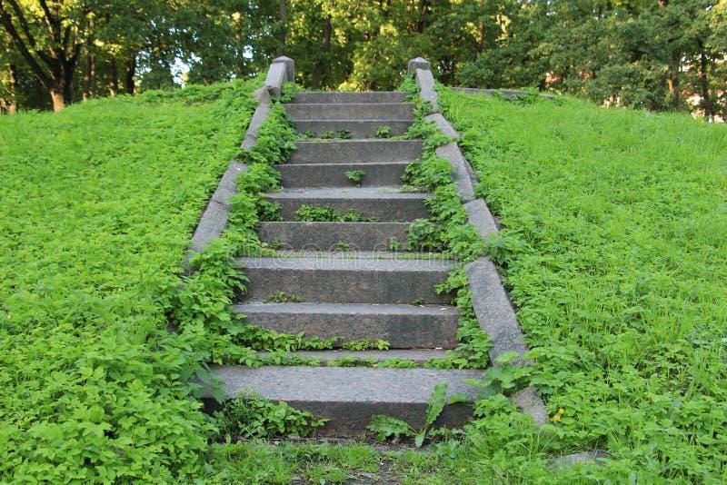 石楼梯在公园 免版税库存照片