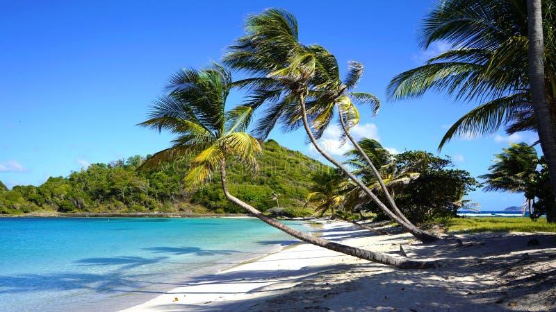 石榴汁糖浆的海岛,Mayreau 库存图片