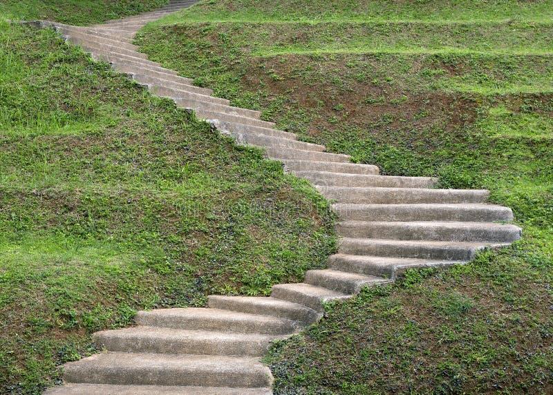 石步台阶在庭院里 免版税库存图片
