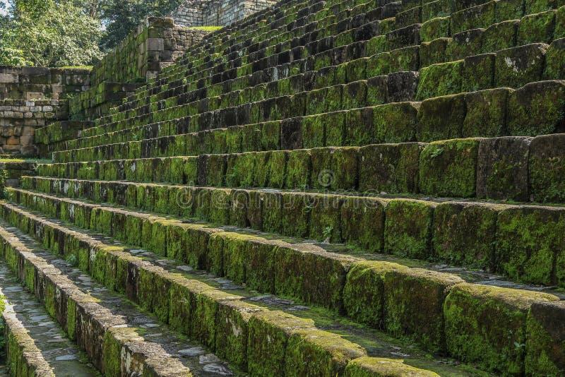 石步被放弃的玛雅寺庙, Quirigua废墟,危地马拉 免版税库存图片
