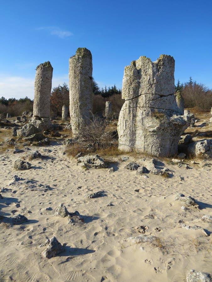 石沙漠或石森林在瓦尔纳附近 自然形成了专栏岩石 象风景的童话 建造者 免版税图库摄影