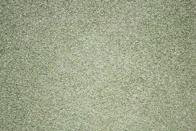 石渣墙壁,后面背景是绿色的 题字的图片 Copyspace 免版税图库摄影