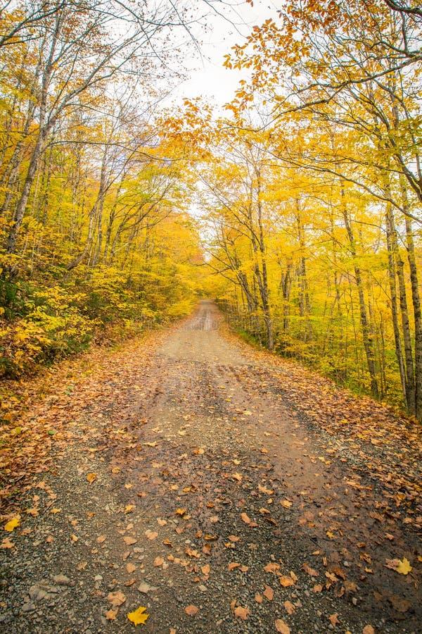 石渣路在秋天 免版税库存照片