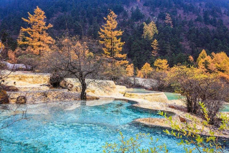 石灰华池塘在秋天森林里 免版税库存照片