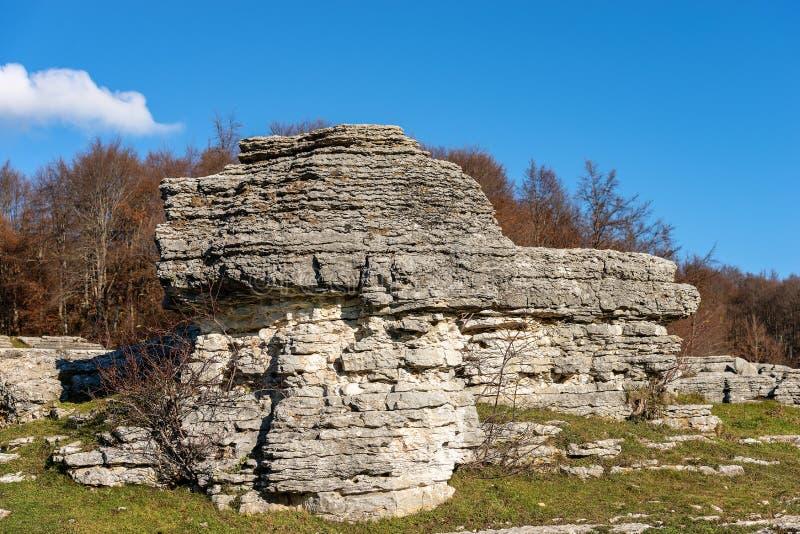 石灰岩地区常见的地形侵蚀形成Lessinia意大利-石灰石巨型独石 图库摄影