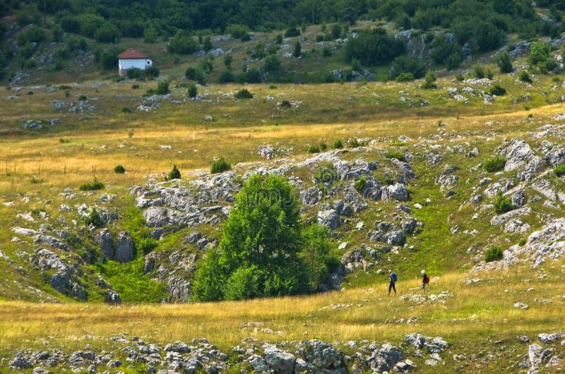 石灰岩地区常见的地形污水池,细节从烦恼高原风景 库存图片
