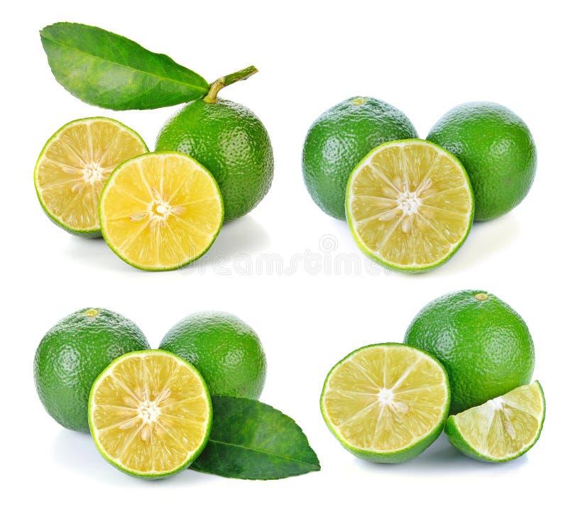 Download 石灰果子 库存图片. 图片 包括有 果皮, 果子, 干净, 宏指令, 柑橘, 柠檬, 生气勃勃, 汁液, 部分 - 59107885