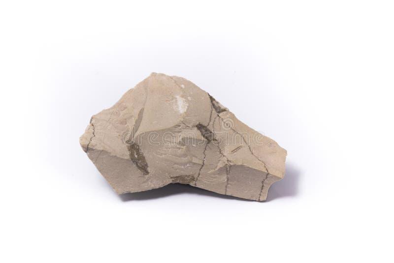 石灰泥石头 图库摄影
