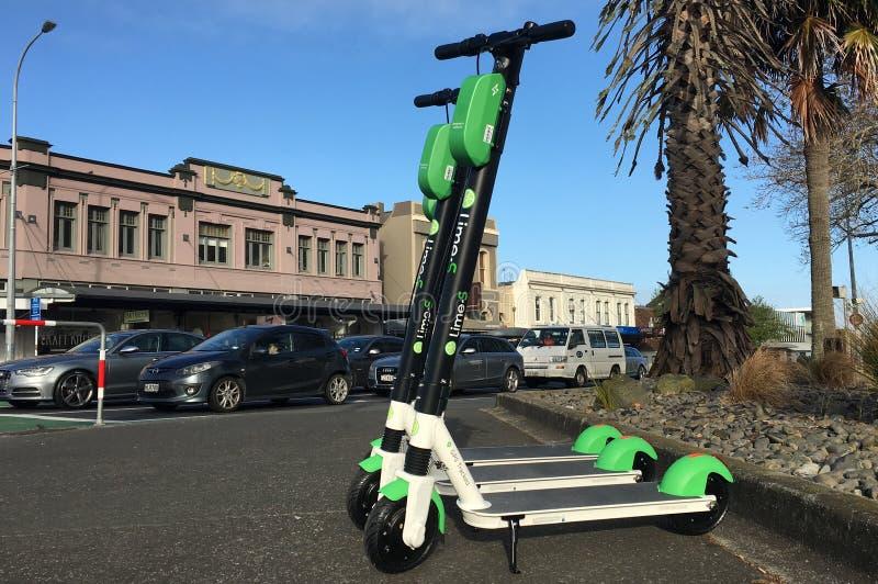 石灰电滑行车在奥克兰,新西兰 库存图片