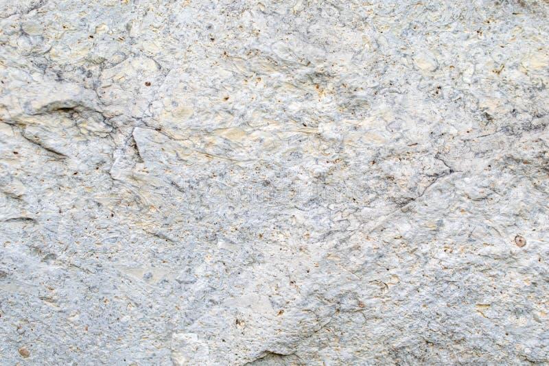 石灰石一块石平板的结构  免版税库存照片