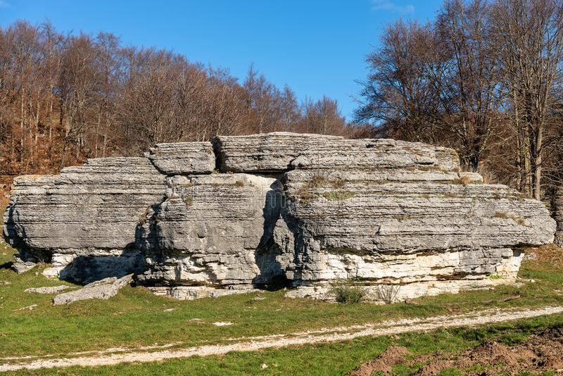 石灰石巨型独石-石灰岩地区常见的地形侵蚀形成Lessinia意大利 库存图片