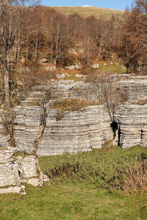 石灰石巨型独石-石灰岩地区常见的地形侵蚀形成Lessinia意大利 免版税图库摄影