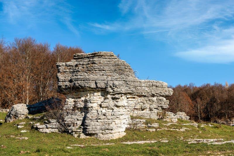 石灰石巨型独石-石灰岩地区常见的地形侵蚀形成Lessinia意大利 库存照片