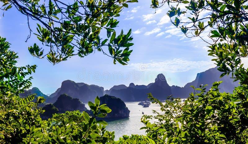 石灰石由哈隆海湾的海岛风景在越南 免版税库存图片