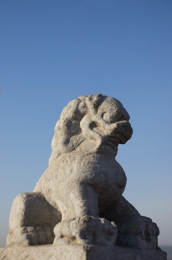 石狮子 库存图片