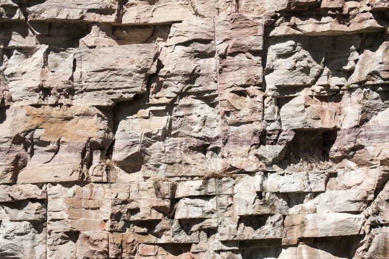 石猎物墙壁 库存照片