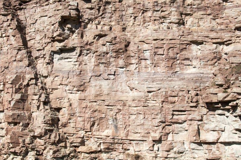 石猎物墙壁 库存图片