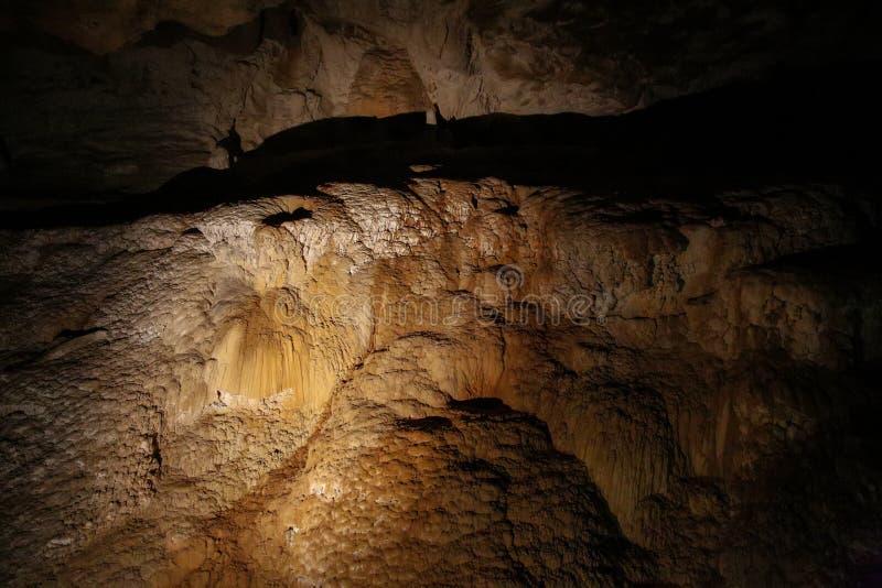 石笋在Ruakuri洞, Waitomo, NZ的岩层 库存照片