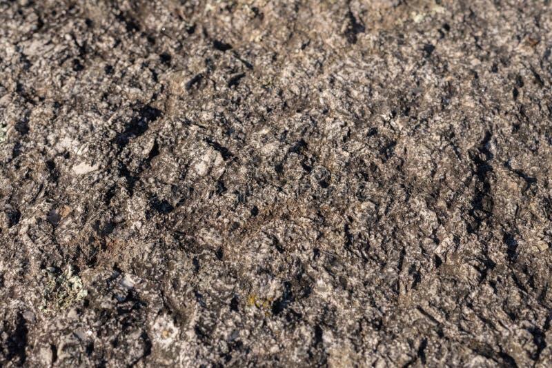 石纹理特写镜头 免版税库存照片