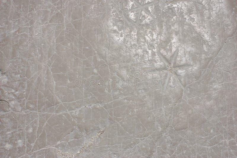 石纹理白色 图库摄影