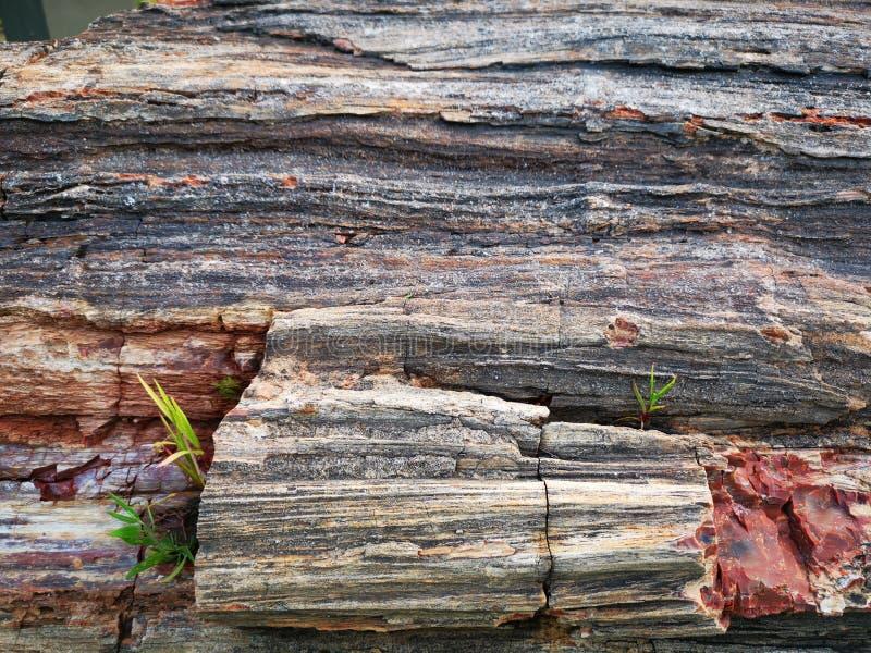 石纹理细节-被构造的五颜六色的岩石 免版税图库摄影