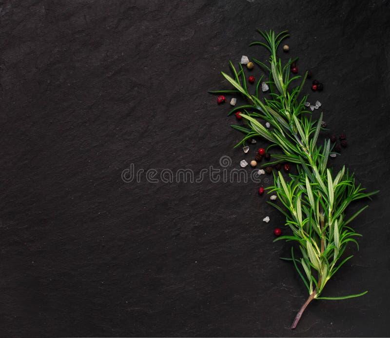 石背景的罗斯玛丽用一些香料 免版税库存图片