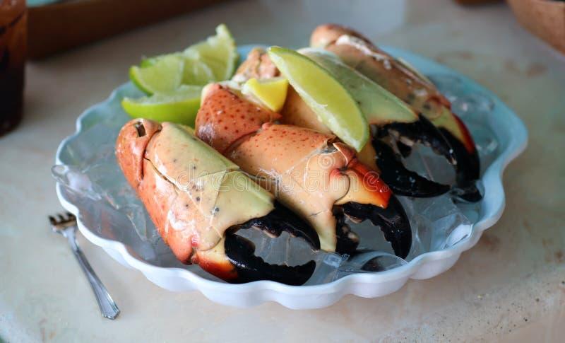 石蟹在南佛罗里达美国抓优质海鲜烹调 库存图片